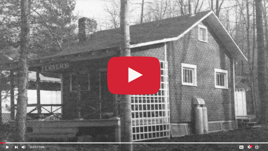 Lives Touched by Laurelville: A Snapshot View – Those First 50 Years Were Remarkable, Why?