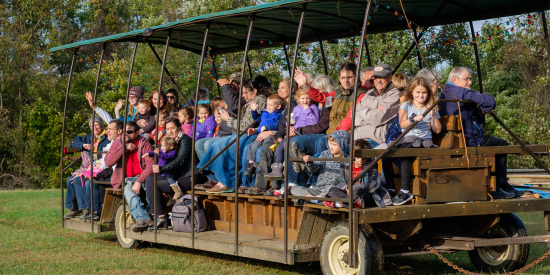 Go on a wgon ride at Laurelville, a Christian Retreat Center
